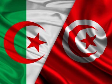 تونس الجزائر